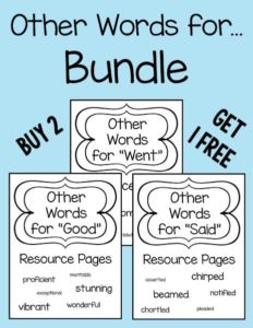 Other-Words-for-Bundle-web